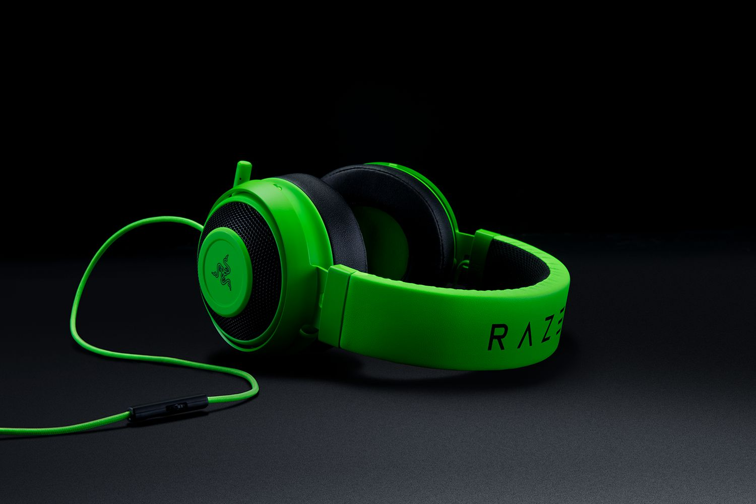 Razer Kraken Pro V2 Black Round Ear Cushion